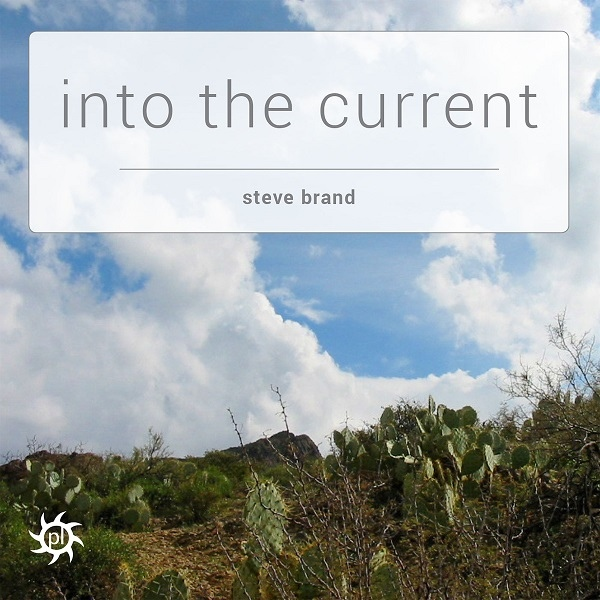 Steve Brand - Into the Current