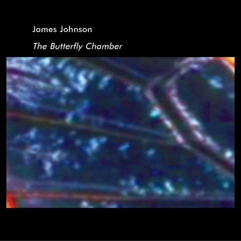 James Johnson - The Butterfly Chamber