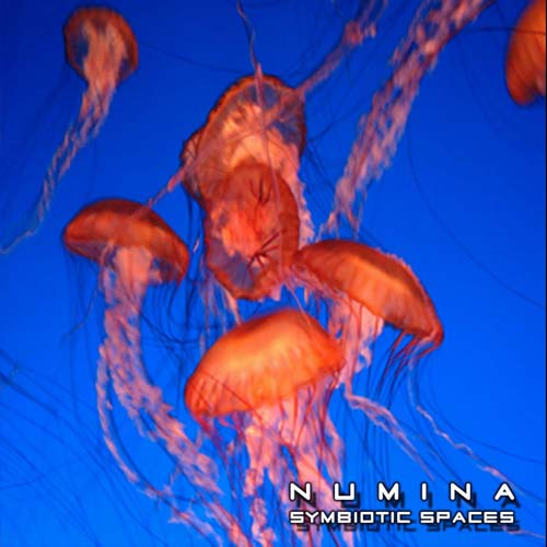Numina - Symbiotic Spaces (2cd)